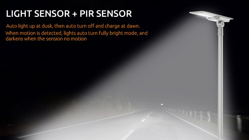 PIR sensor and light sensor